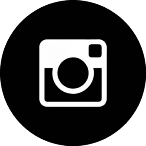 icone instagram site
